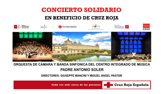 cartel solidario(543x314)